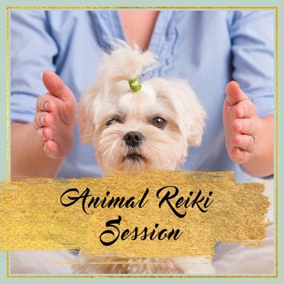 animal-reiki-session